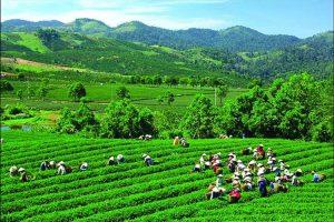 Điểm du lịch Thái Nguyên